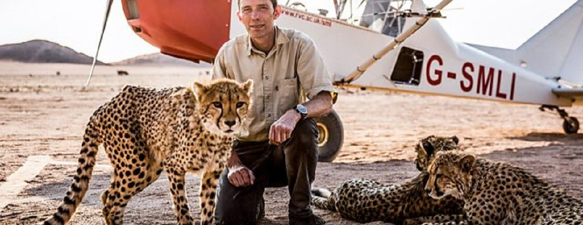 Summer Film Series Ends with Big Cats Documentary